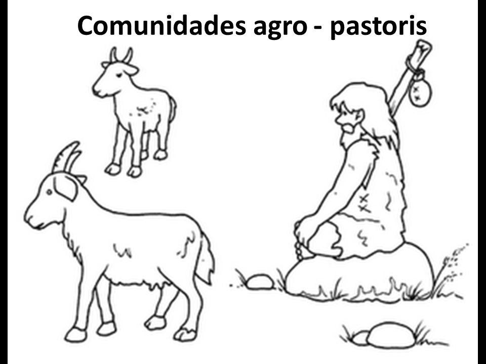 Comunidades agro - pastoris