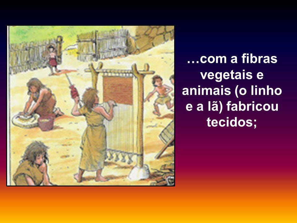 …com a fibras vegetais e animais (o linho e a lã) fabricou tecidos;