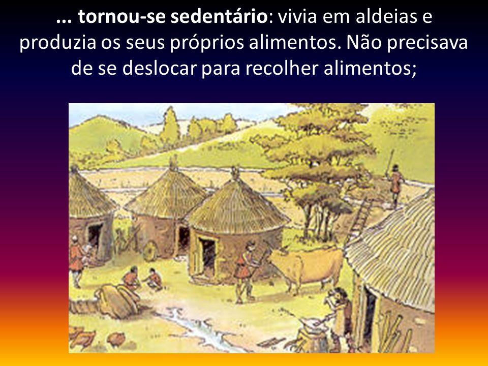 ... tornou-se sedentário: vivia em aldeias e produzia os seus próprios alimentos. Não precisava de se deslocar para recolher alimentos;