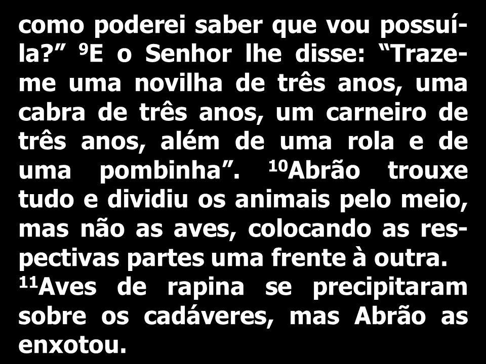 Carta de São Paulo apóstolo aos Filipenses: 17 Sede meus imitadores, irmãos, e observai os que vivem de acordo com o exemplo que nós damos.
