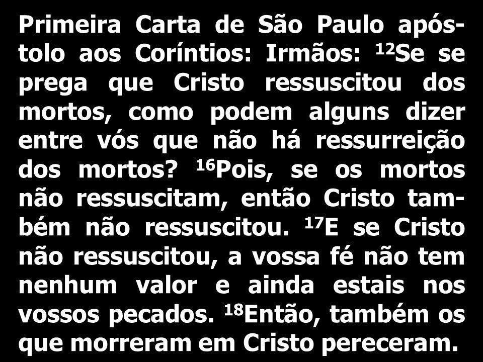 Primeira Carta de São Paulo após- tolo aos Coríntios: Irmãos: 12 Se se prega que Cristo ressuscitou dos mortos, como podem alguns dizer entre vós que não há ressurreição dos mortos.
