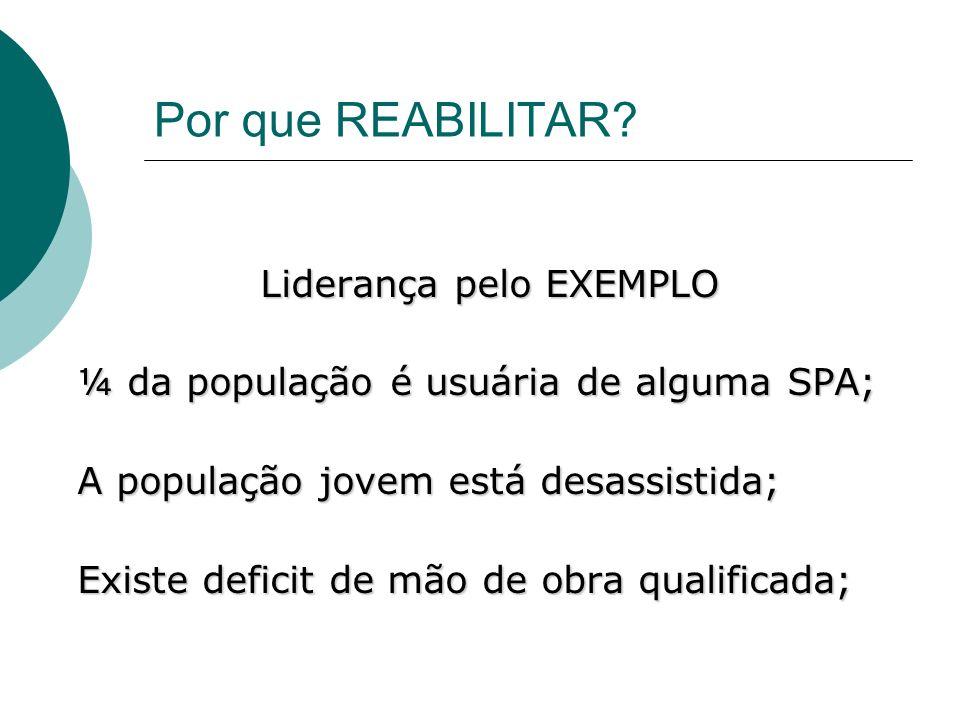 Por que REABILITAR? Liderança pelo EXEMPLO ¼ da população é usuária de alguma SPA; A população jovem está desassistida; Existe deficit de mão de obra