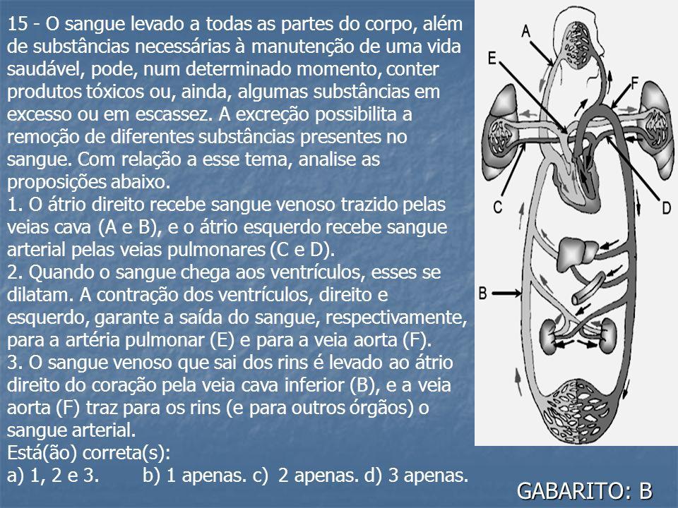 GABARITO: B 15 - O sangue levado a todas as partes do corpo, além de substâncias necessárias à manutenção de uma vida saudável, pode, num determinado