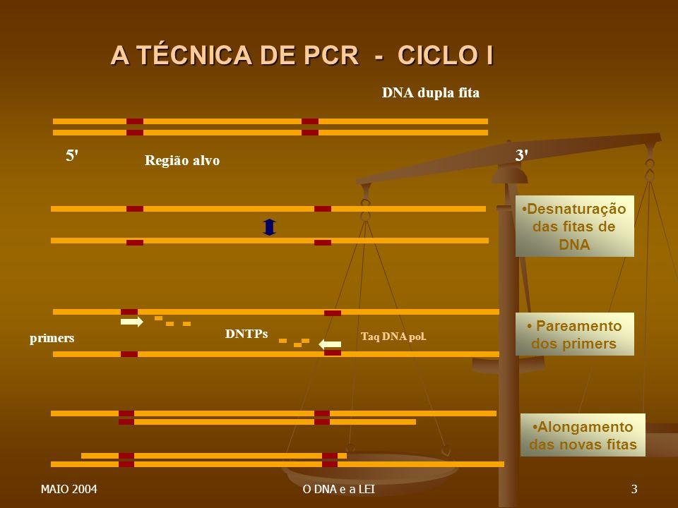 MAIO 2004O DNA e a LEI3 5'3' DNA dupla fita Região alvo primers DNTPs Taq DNA pol. A TÉCNICA DE PCR - CICLO I Desnaturação das fitas de DNA Pareamento
