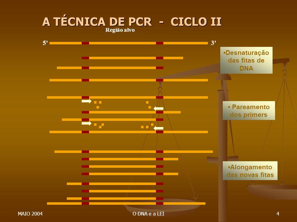 MAIO 2004O DNA e a LEI4 5'3' Região alvo Desnaturação das fitas de DNA Pareamento dos primers Alongamento das novas fitas A TÉCNICA DE PCR - CICLO II