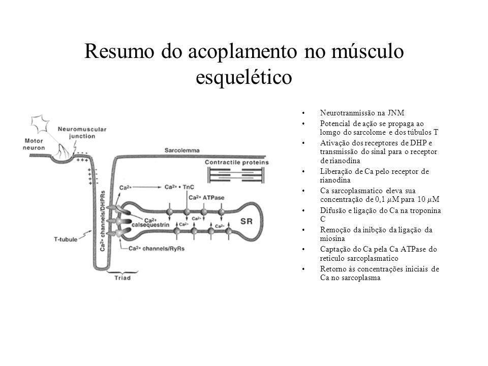 Resumo do acoplamento no músculo esquelético Neurotranmissão na JNM Potencial de ação se propaga ao lomgo do sarcolome e dos túbulos T Ativação dos re