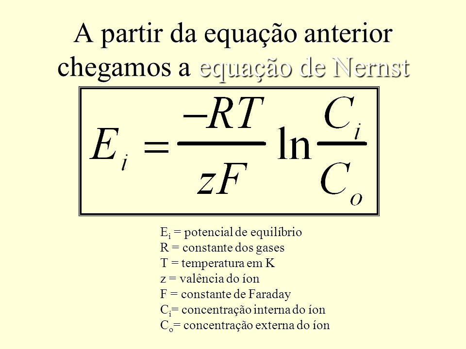 A partir da equação anterior chegamos a equação de Nernst E i = potencial de equilíbrio R = constante dos gases T = temperatura em K z = valência do í