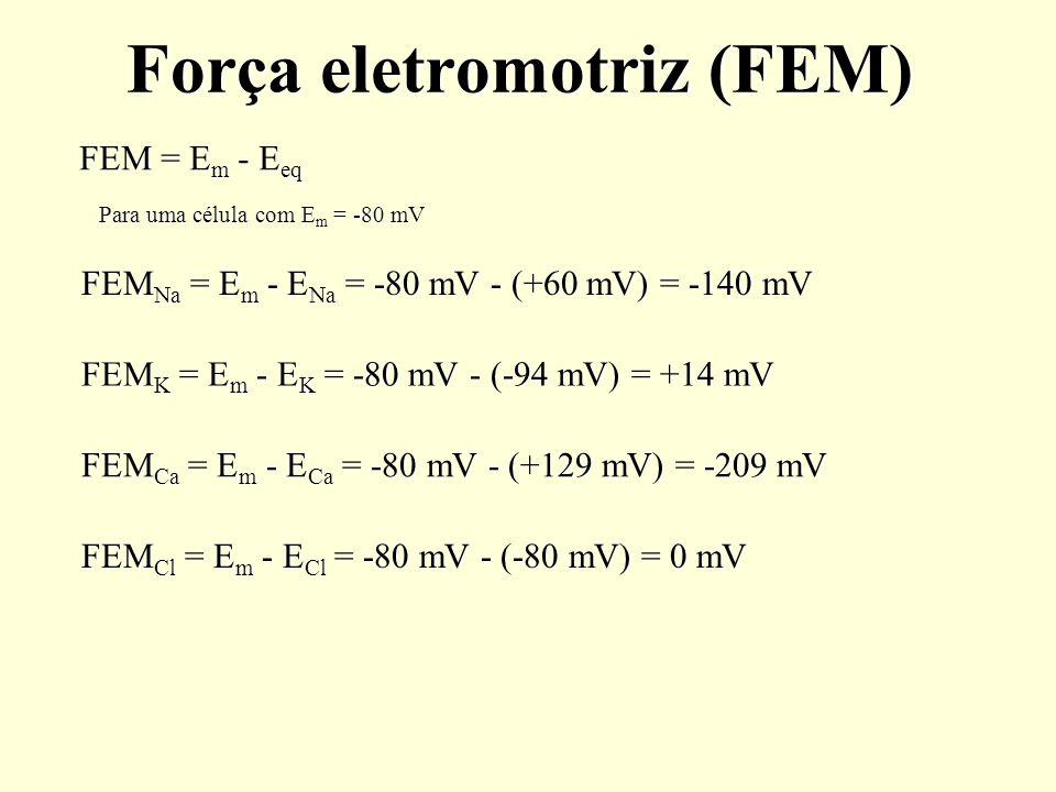 Força eletromotriz (FEM) FEM = E m - E eq FEM Na = E m - E Na = -80 mV - (+60 mV) = -140 mV FEM K = E m - E K = -80 mV - (-94 mV) = +14 mV FEM Cl = E