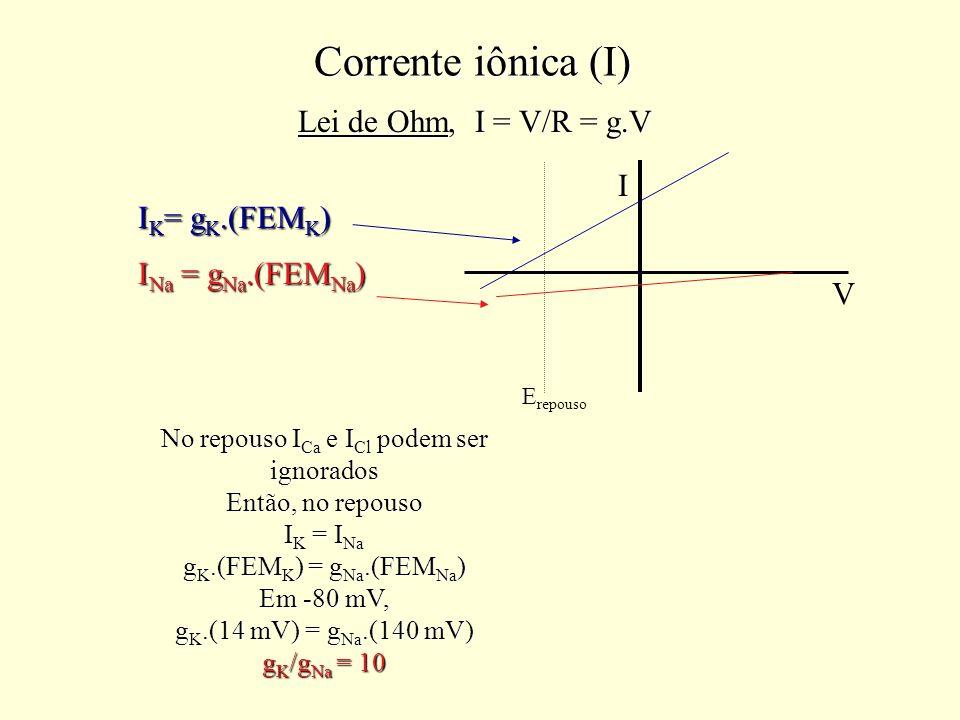 Corrente iônica (I) Lei de Ohm, I = V/R = g.V I Na = g Na.(FEM Na ) I K = g K.(FEM K ) No repouso I Ca e I Cl podem ser ignorados Então, no repouso I