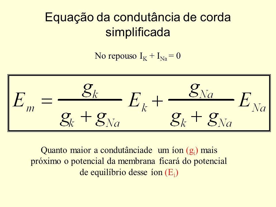 No repouso I K + I Na = 0 Equação da condutância de corda simplificada Quanto maior a condutânciade um íon (g i ) mais próximo o potencial da membrana