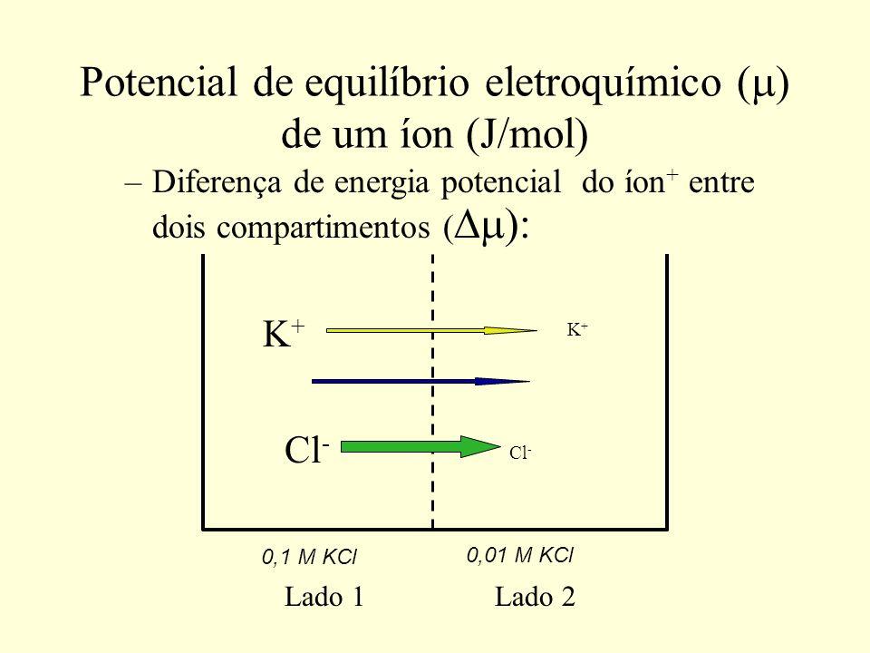 Cálculo do potencial de equilíbrio eletroquímico ( ) de um íon (J/mol) –Diferença de energia potencial do K + entre dois compartimentos ( : –O fluxo Iônico se dá do lado com MAIOR potencial para o lado com MENOR potencial.