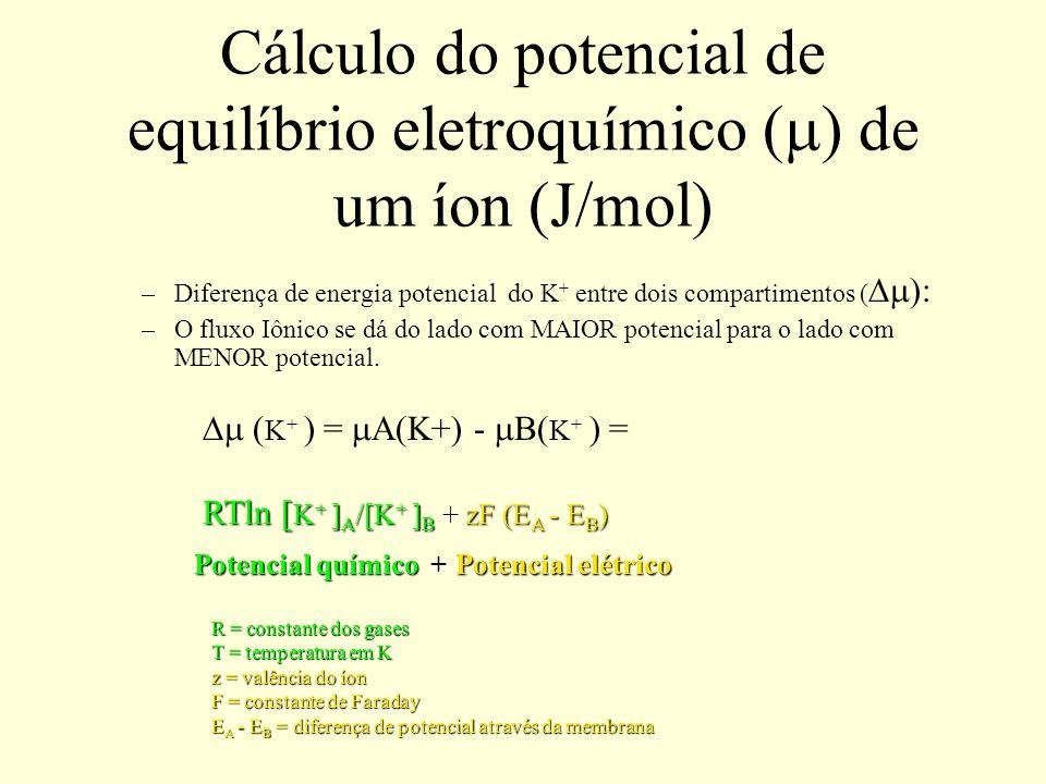 Cálculo do potencial de equilíbrio eletroquímico ( ) de um íon (J/mol) –Diferença de energia potencial do K + entre dois compartimentos ( : –O fluxo I