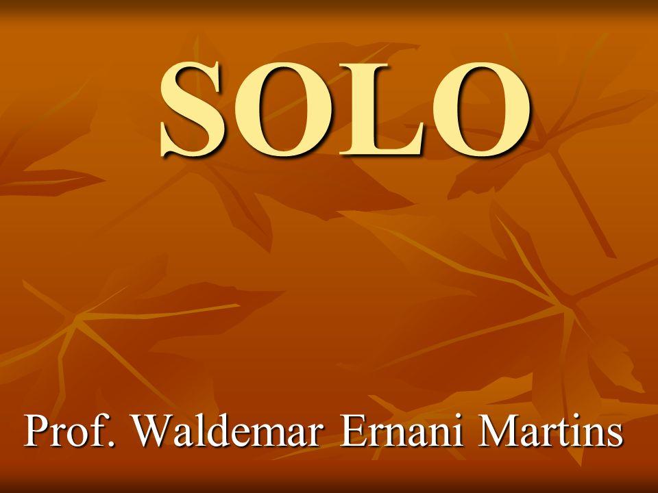 SOLO Prof. Waldemar Ernani Martins