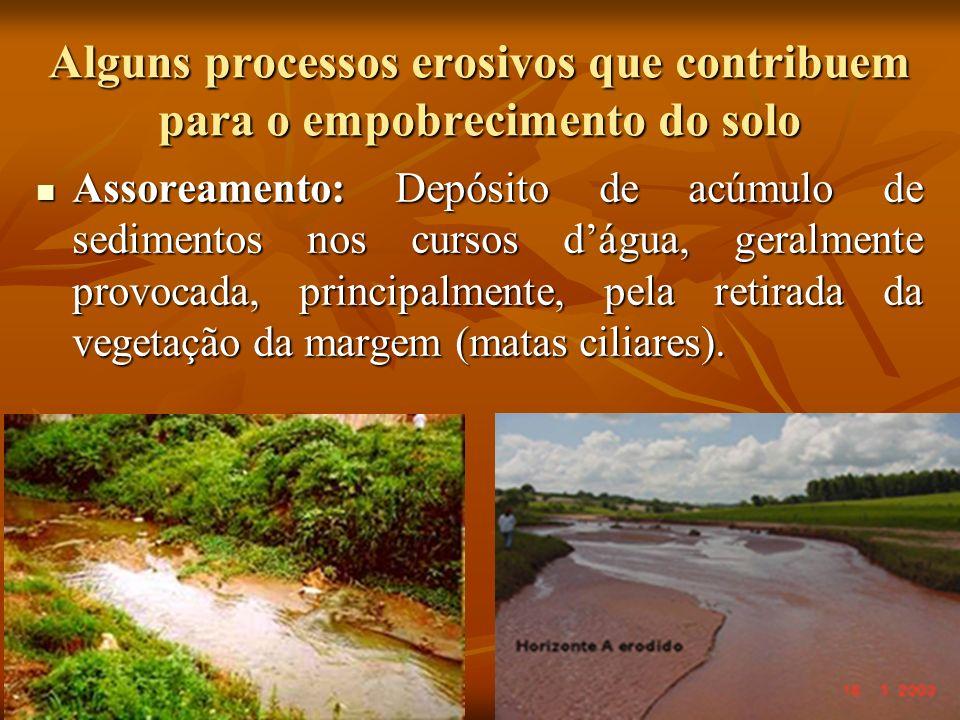 Alguns processos erosivos que contribuem para o empobrecimento do solo Assoreamento: Depósito de acúmulo de sedimentos nos cursos dágua, geralmente pr