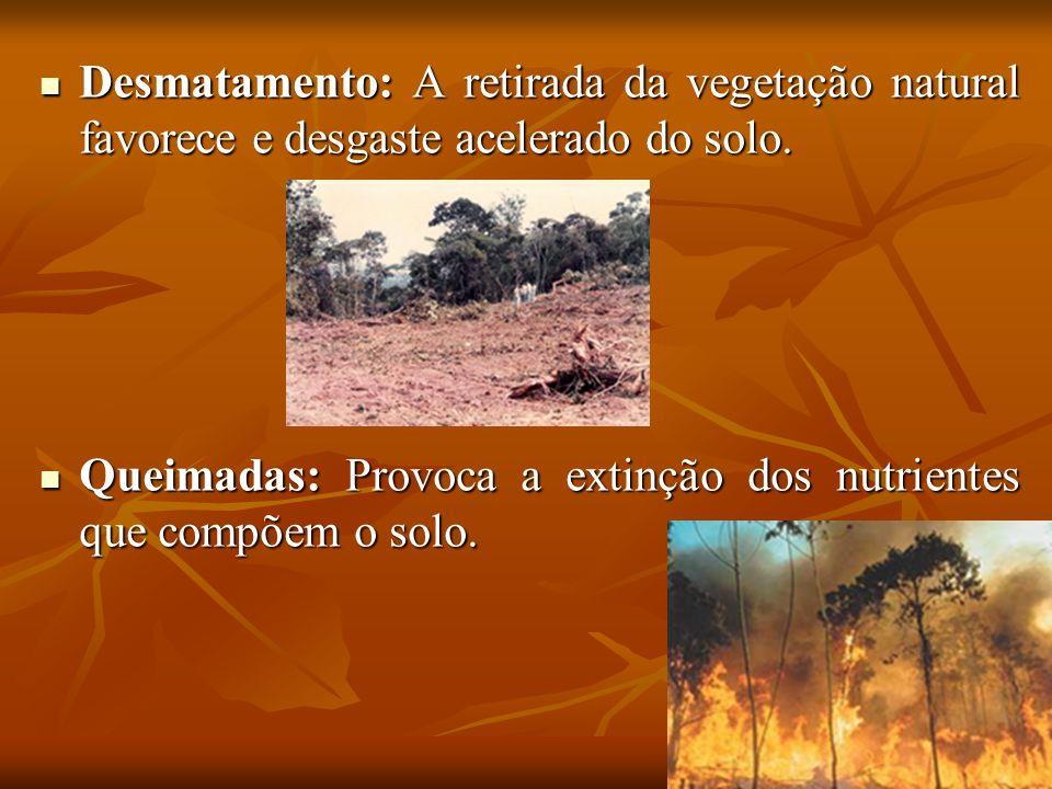 Desmatamento: A retirada da vegetação natural favorece e desgaste acelerado do solo. Desmatamento: A retirada da vegetação natural favorece e desgaste