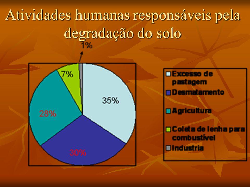 Atividades humanas responsáveis pela degradação do solo