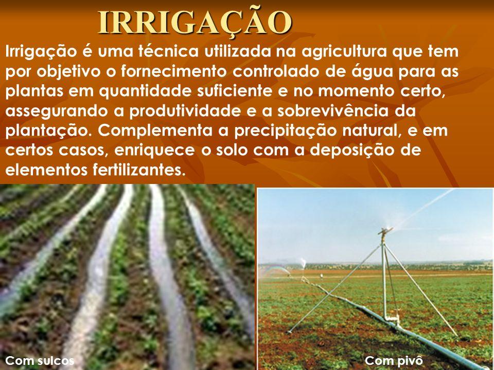 Irrigação é uma técnica utilizada na agricultura que tem por objetivo o fornecimento controlado de água para as plantas em quantidade suficiente e no