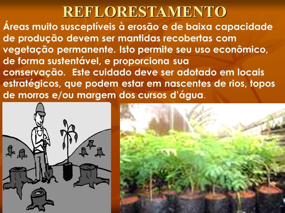 Áreas muito susceptíveis à erosão e de baixa capacidade de produção devem ser mantidas recobertas com vegetação permanente. Isto permite seu uso econô