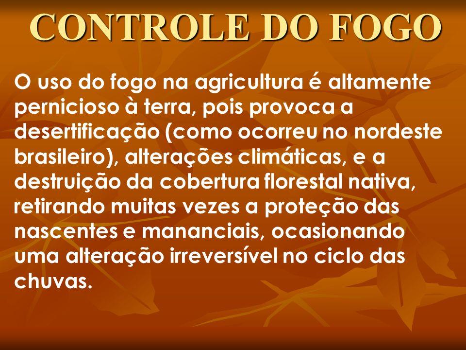 O uso do fogo na agricultura é altamente pernicioso à terra, pois provoca a desertificação (como ocorreu no nordeste brasileiro), alterações climática