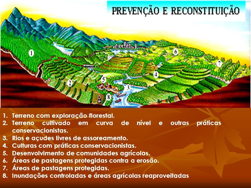 1.Terreno com exploração florestal. 2.Terreno cultivado em curva de nível e outras práticas conservacionistas. 3.Rios e açudes livres de assoreamento.