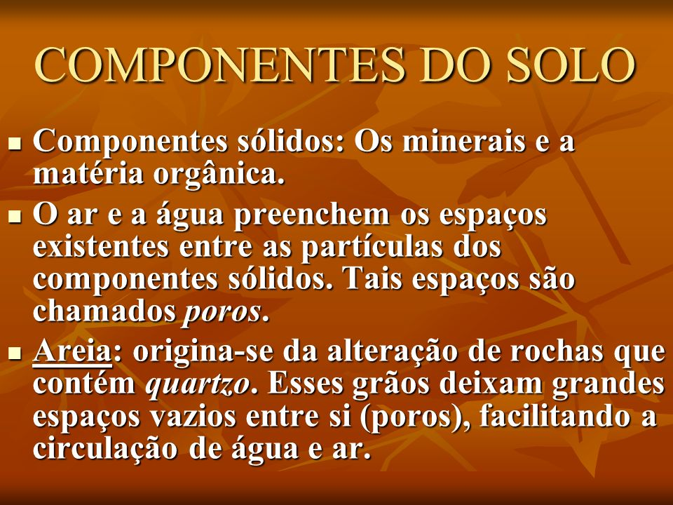 COMPONENTES DO SOLO COMPONENTES DO SOLO Componentes sólidos: Os minerais e a matéria orgânica. Componentes sólidos: Os minerais e a matéria orgânica.