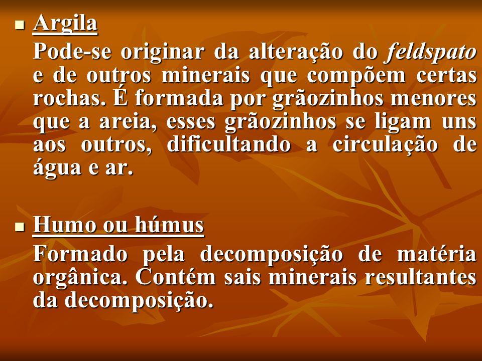 Argila Argila Pode-se originar da alteração do feldspato e de outros minerais que compõem certas rochas. É formada por grãozinhos menores que a areia,