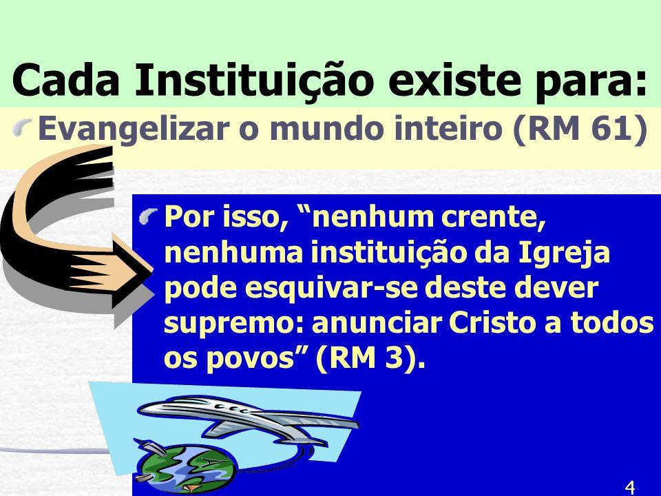 Cada Instituição existe para: Evangelizar o mundo inteiro (RM 61) Por isso, nenhum crente, nenhuma instituição da Igreja pode esquivar-se deste dever supremo: anunciar Cristo a todos os povos (RM 3).