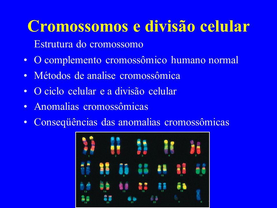Cromossomos e divisão celular Estrutura do cromossomo O complemento cromossômico humano normal Métodos de analise cromossômica O ciclo celular e a div