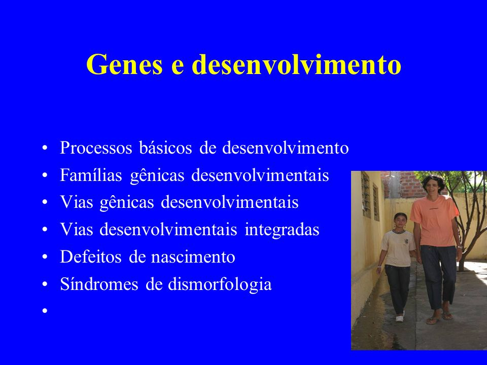 Genes e desenvolvimento Processos básicos de desenvolvimento Famílias gênicas desenvolvimentais Vias gênicas desenvolvimentais Vias desenvolvimentais