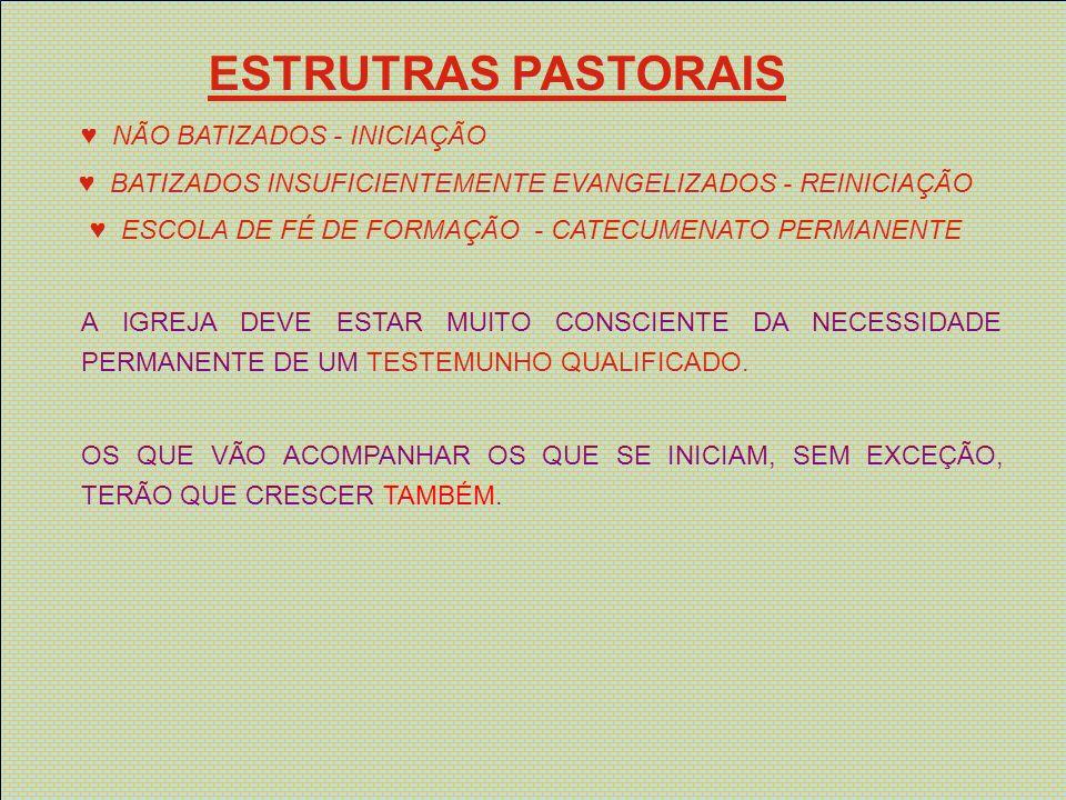 ESTRUTRAS PASTORAIS NÃO BATIZADOS - INICIAÇÃO BATIZADOS INSUFICIENTEMENTE EVANGELIZADOS - REINICIAÇÃO ESCOLA DE FÉ DE FORMAÇÃO - CATECUMENATO PERMANEN
