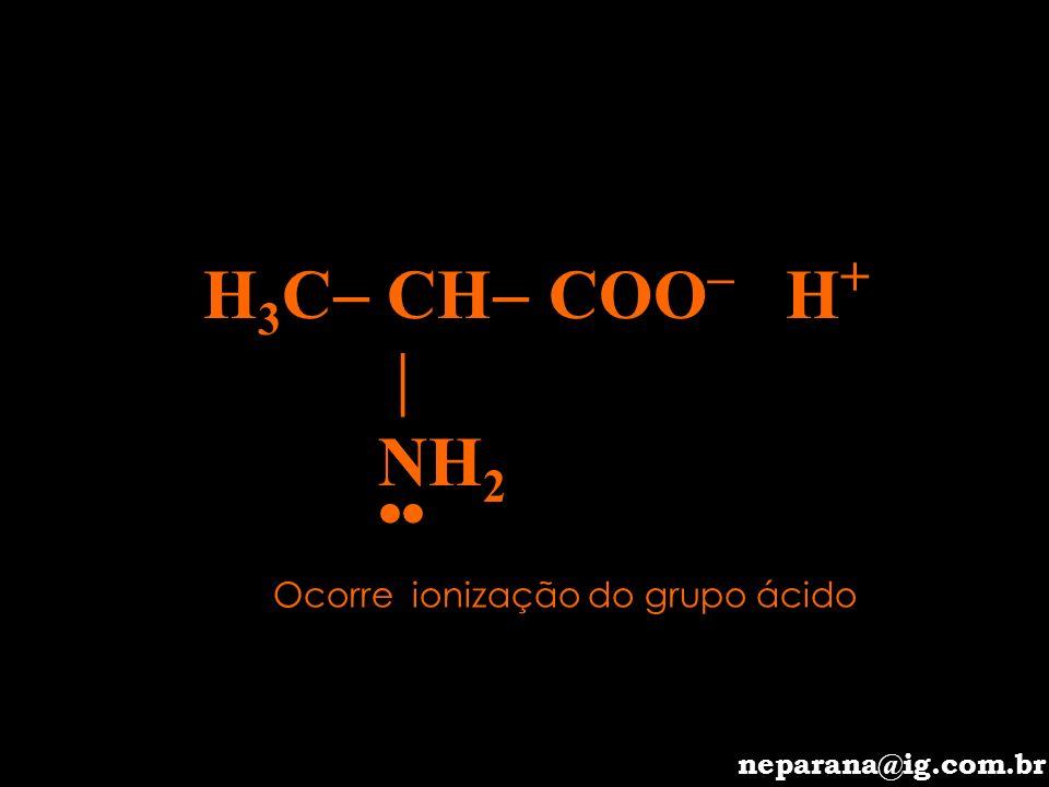 H 3 C CH COO H NH 2