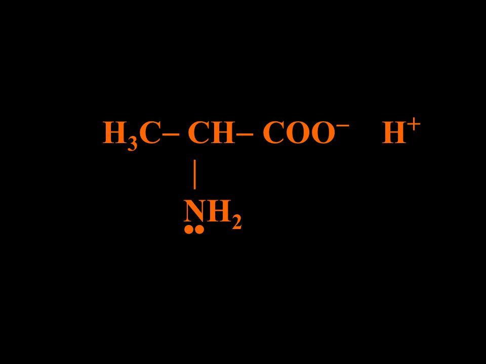 H 3 C CH COO – H + NH 2 Ocorre ionização do grupo ácido neparana@ig.com.br