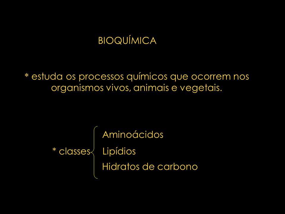 H 3 C CH COO NH 2 H+H+ neparana@bol.com.br