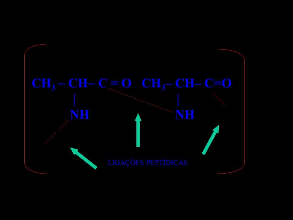 CH 3 CH C = O CH 3 – CH– C=O | | NH NH LIGAÇÕES PEPTÍDICAS