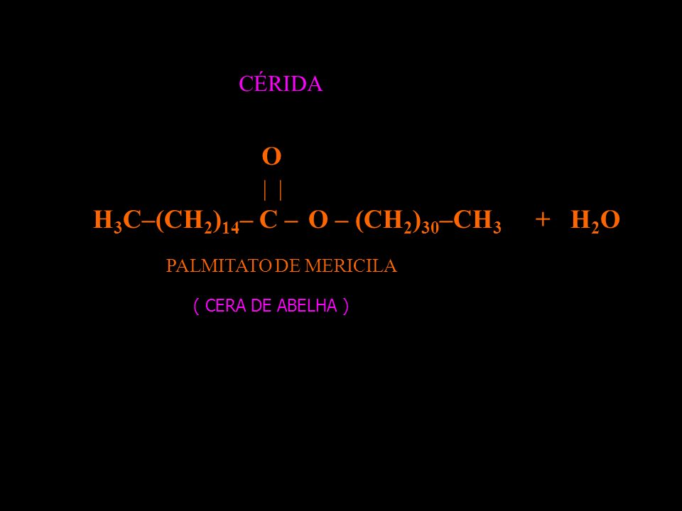 H 3 C–(CH 2 ) 14 – C– OH | O HO – (CH 2 ) 30 –CH 3 AC. PALMÍTICOÁLCOOL MERICÍLICO +
