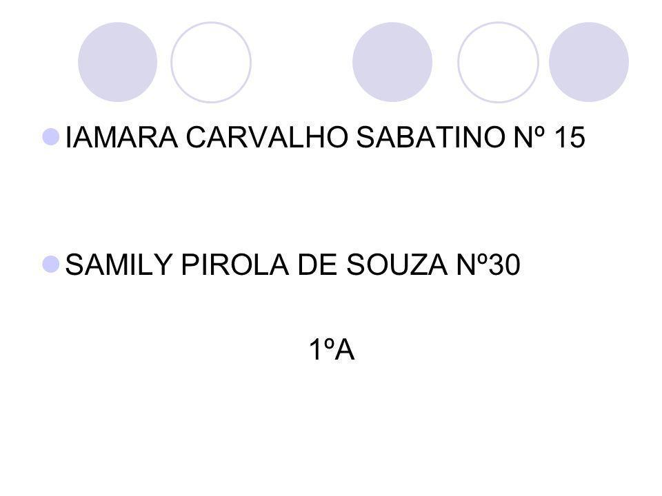IAMARA CARVALHO SABATINO Nº 15 SAMILY PIROLA DE SOUZA Nº30 1ºA