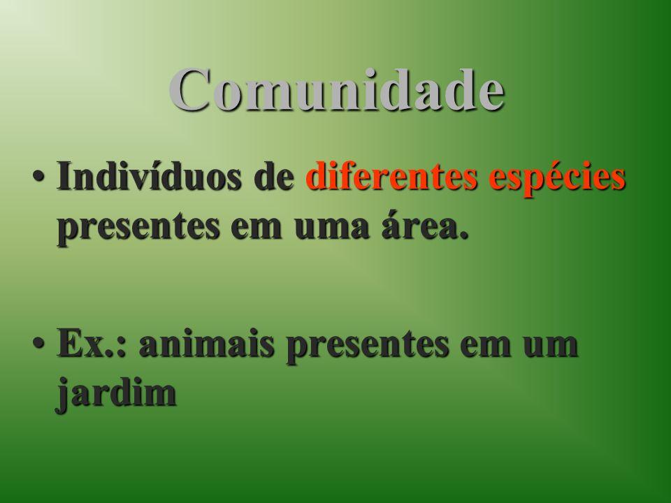 Comunidade Indivíduos de diferentes espécies presentes em uma área.Indivíduos de diferentes espécies presentes em uma área. Ex.: animais presentes em