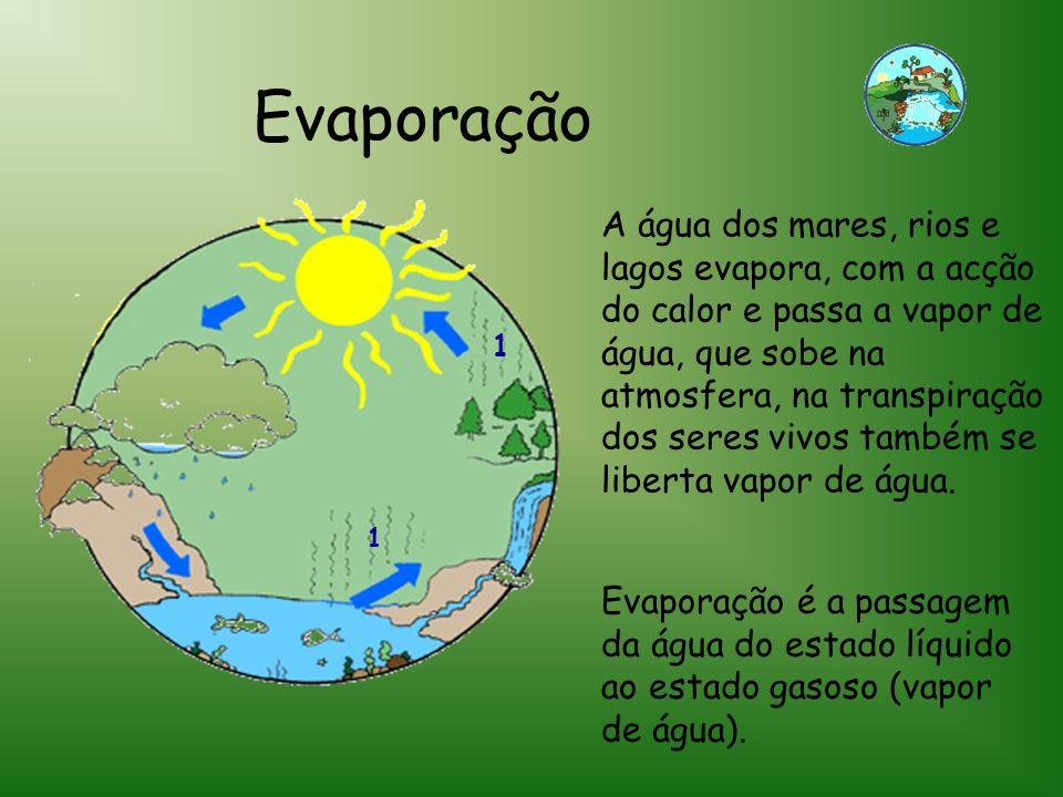 1 1 A água dos mares, rios e lagos evapora, com a acção do calor e passa a vapor de água, que sobe na atmosfera, na transpiração dos seres vivos també