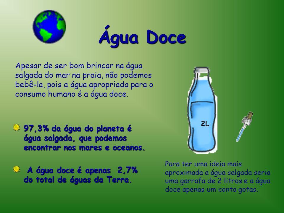 Água Doce 97,3% da água do planeta é água salgada, que podemos encontrar nos mares e oceanos. A água doce é apenas 2,7% do total de águas da Terra. Pa