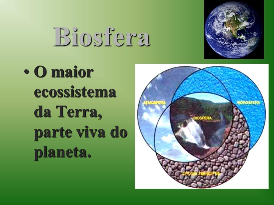 Biosfera O maior ecossistema da Terra, parte viva do planeta.O maior ecossistema da Terra, parte viva do planeta.