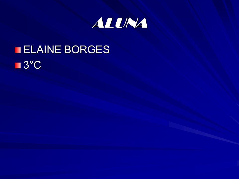ALUNA ELAINE BORGES 3°C