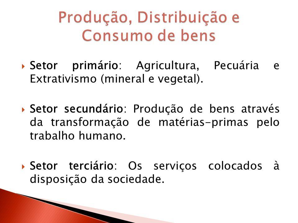 Setor primário: Agricultura, Pecuária e Extrativismo (mineral e vegetal). Setor secundário: Produção de bens através da transformação de matérias-prim