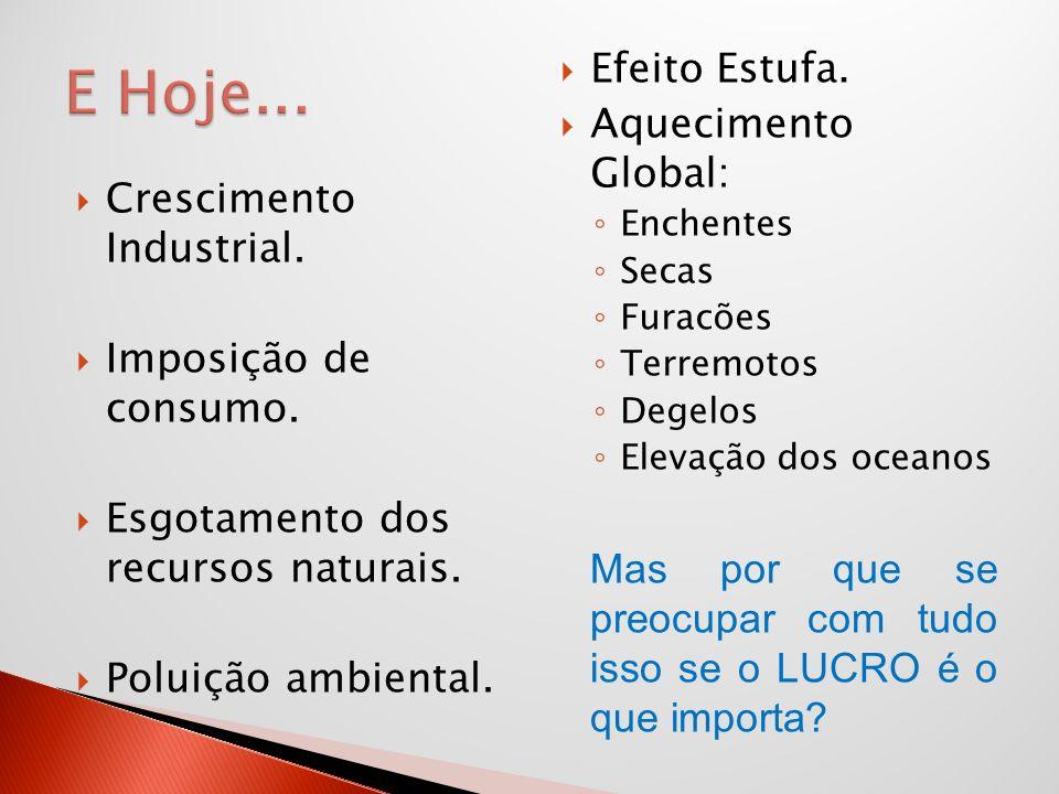 Crescimento Industrial. Imposição de consumo. Esgotamento dos recursos naturais. Poluição ambiental. Efeito Estufa. Aquecimento Global: Enchentes Seca