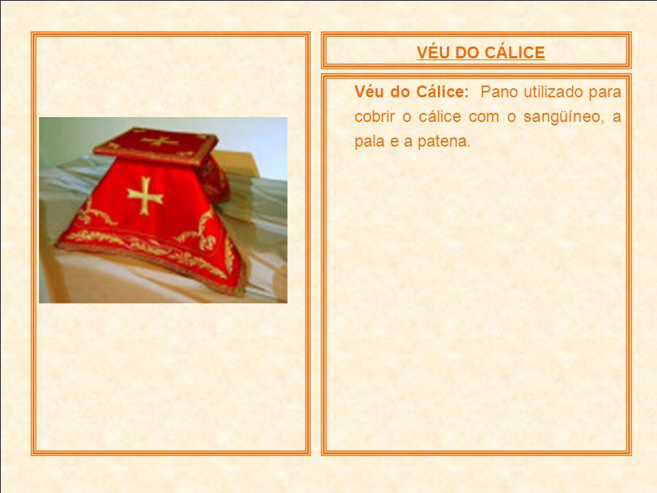 VÉU DO CÁLICE Véu do Cálice: Pano utilizado para cobrir o cálice com o sangüíneo, a pala e a patena.