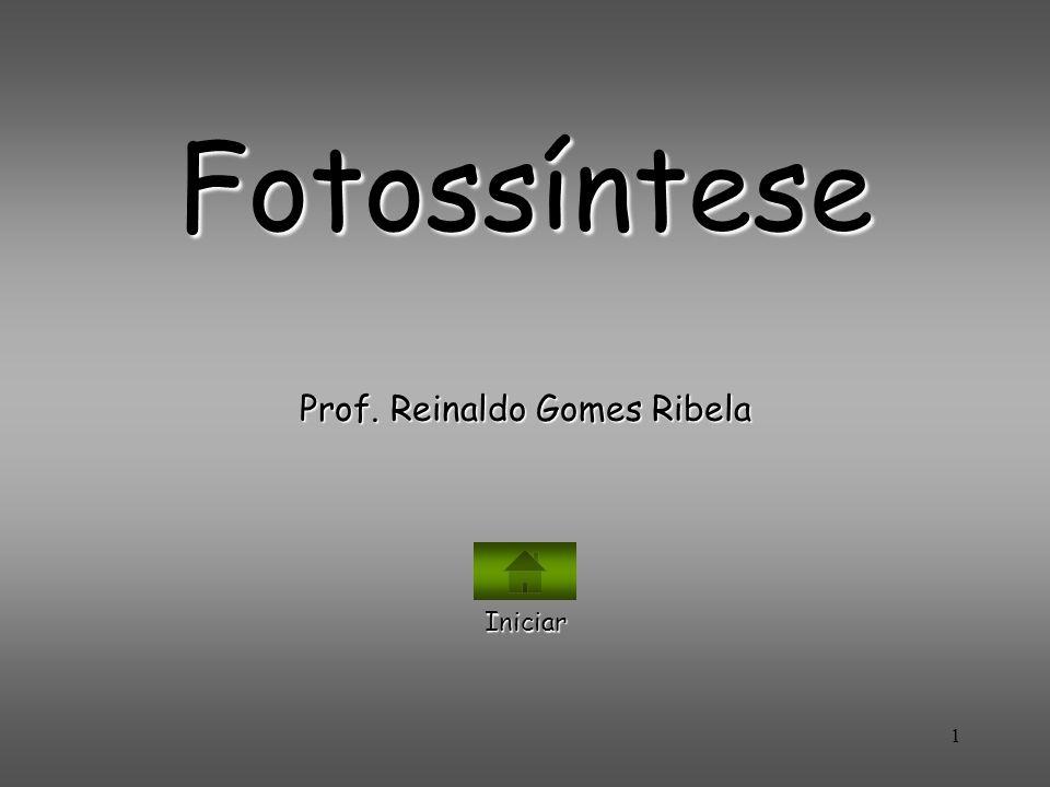 1 Fotossíntese Prof. Reinaldo Gomes Ribela Iniciar