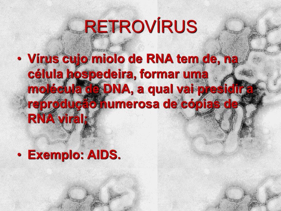 ARBOVÍRUS Vírus oriundos de artrópodes (insetos);Vírus oriundos de artrópodes (insetos); Exemplo: vírus da febre amarela e da dengue (são transmitidos