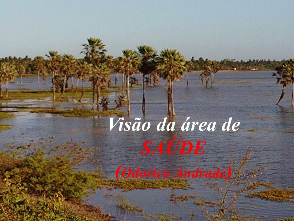 Visão da área de SAÚDE ( Odorico Andrade )