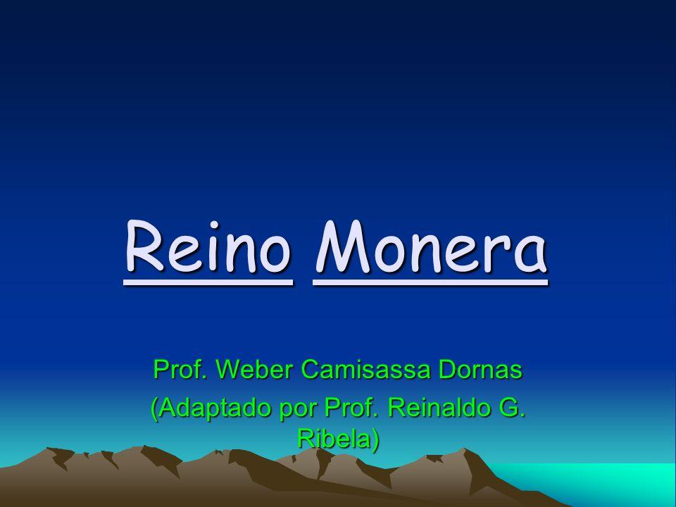 Reino Monera Prof. Weber Camisassa Dornas (Adaptado por Prof. Reinaldo G. Ribela)