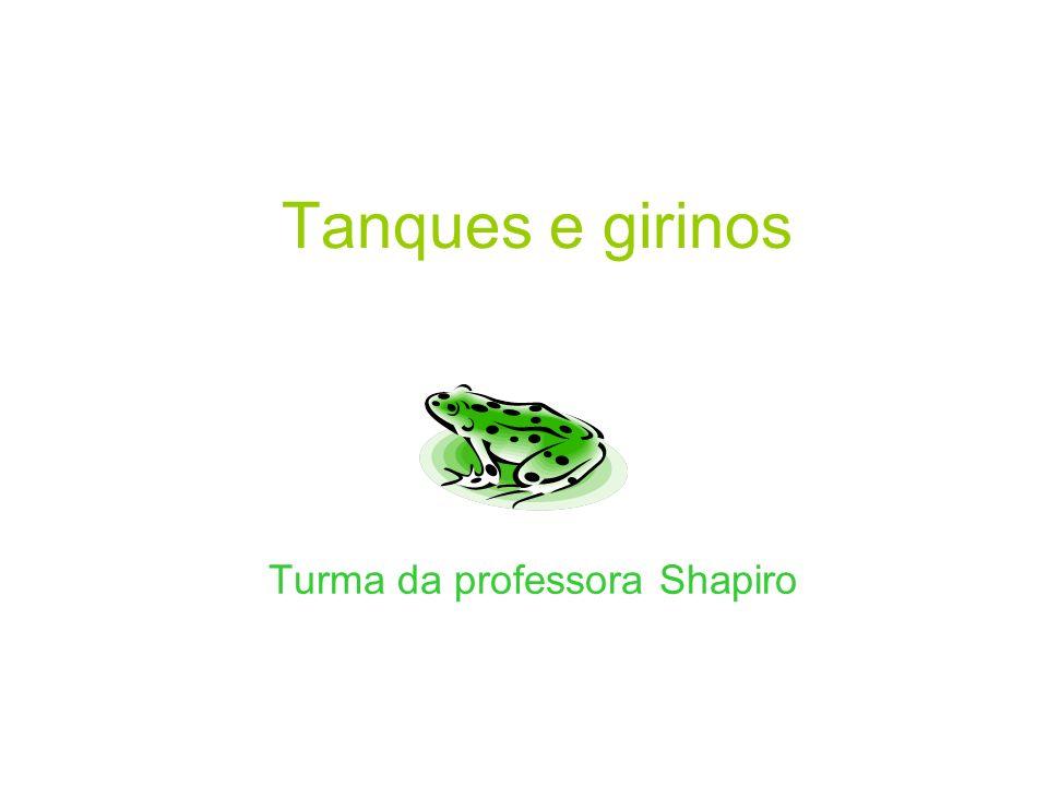 Tanques e girinos Turma da professora Shapiro