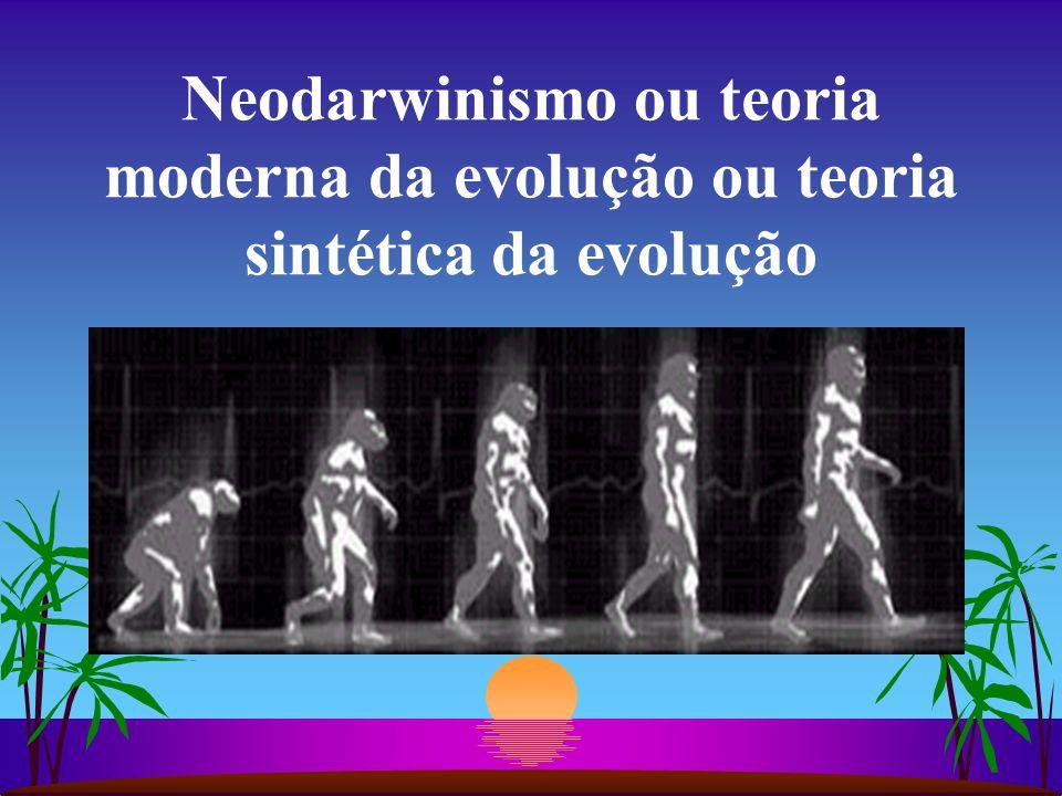NEODARWINISMO Pontos básicos da teoria moderna: a) As variações de uma espécie dependem de mutações.